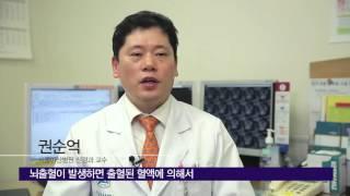 뇌출혈의 치료 미리보기