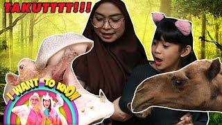 AUTO PANIK!! Ria Ricis dan Lifia Main Sama Kuda Nil dan Unta! - I Want To Know 10