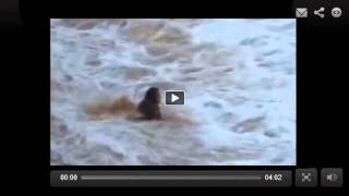 Mujer tragada viva por desafiar a una ola