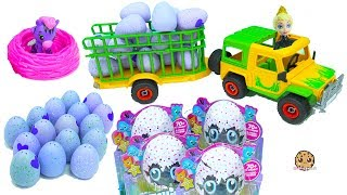 Queen Elsa and Kristoff (dolls from the Disney Frozen movie) are loading up the truck with Hatchimal eggs so they can take them back to the hatchery to hatch out of their shells. Which ones will I find? Enjoy this fun play video awesome cookie fans!Join me Cookieswirlc as I become a cute baby in Roblox and play some other fun baby games! :DFREE Subscription Never miss a video!  Click here : http://bit.ly/1RYkDF6Watch More Cookie Swirl C  Toy Videos from Playlist:Hatchimals CollEGGtibles Hatching Surprise Blind Bag Baby Animal Eggs with My Little Pony https://youtu.be/iNfCEYhs4m8Hatchimals Hatching Surprise Blind Bag Baby Eggs + Dreamworks Trolls Egg https://youtu.be/AwUa_-XliR8Hatchimals Hatching Surprise Blind Bag Baby Eggs + Giant Shopkins Egg https://youtu.be/y6kdCUan6gAHatchimals Hatching Surprise Blind Bag Baby Eggs & LOL 7 Layer Balls Cry? Color Change? https://youtu.be/8LqYY9BDG9cFeeding Playdoh Food & Taking Care of Hatchimals Owlicorn + Baby Egg with Fur Real Friends  https://youtu.be/CZ-BuyF7ACc◕‿◕Who Is Cookieswirlc - a unique channel bursting with fun, positive, happy energy featuring popular videos on Disney Frozen, Princesses, Littlest Pet Shop LPS, Shopkins, mermaids, My Little Pony MLP, LOL Surprise baby dolls, Lego, Barbie dolls, Play Doh, and much muchy more!!! Everything form stories, series, movies, playset toy reviews, hauls, mystery surprise blind bag openings, and DIY do it yourself fun crafts!www.cookieswirlc.com◕‿◕You rock cookie fans! I'll see you in my next video! - Cookie Swirl C