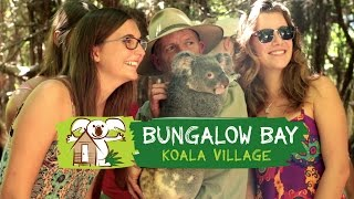 Bungalow Bay Koala Village - Magnetic Island