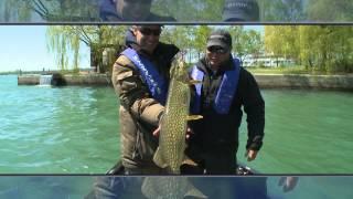 Video Pike Fishing In Lake Ontario - Bob Izumi and Taro Murata MP3, 3GP, MP4, WEBM, AVI, FLV Agustus 2018