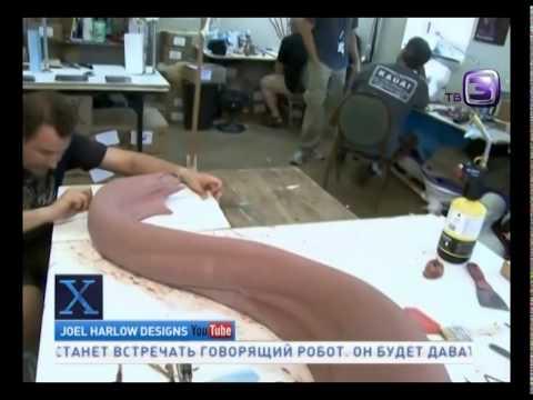 В Мексике нашли мертвую русалку  Х версии  Другие новости - DomaVideo.Ru