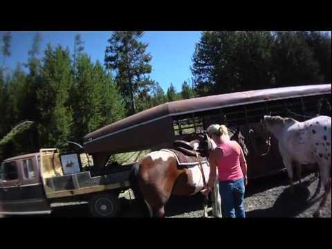 Mountain Pass Ranch Horseback Ride