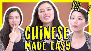 How to Learn Chinese FAST on your own time: https://goo.gl/cFIW4P Sign up for your FREE Lifetime Account right now. ↓ Read the description ↓ In this lesson, ...
