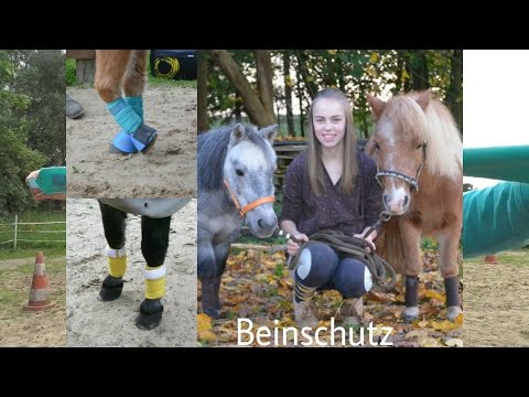 Unser Beinschutz    Bandagen, Gamaschen, Streichkappen, Hufglocken