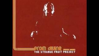 Aquatic Groove - Strange Fruit Project