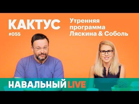 Кактус #055. Гость — отец и менеджер Саши Спилберг Александр Балковский