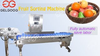 Automatic weighing classifier automatic vegetable classifying machine youtube video