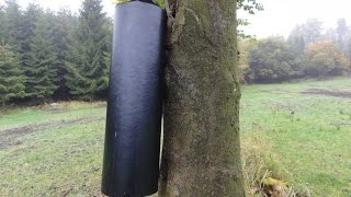 To się nazywa pi**dolnięcie! Koleś wielką petardą ścina drzewo!