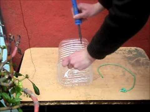 Experimento: Trampas improvisadas