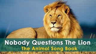 Nobody Questions The Lion | Lion Animal Songs | Animal Rhymes For Children | Animal Song For Kids