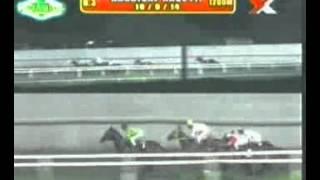 RACE 3 POKER CHIP 10/09/2014