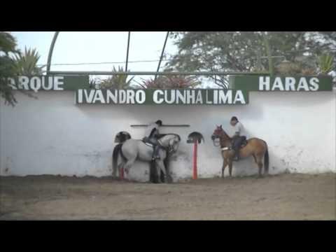Don Apollo Willd Parque Ivandro Cunha Lima 2015