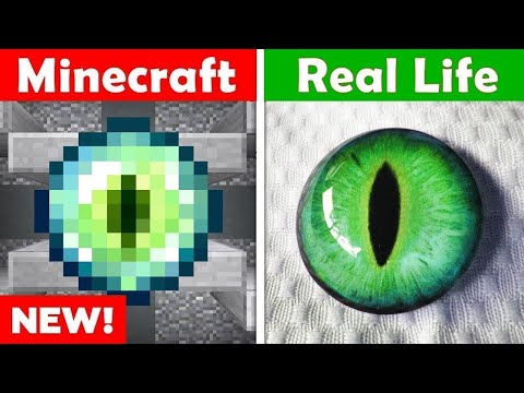 MINECRAFT ENDER EYE IN REAL LIFE! Minecraft vs Real Life animation CHALLENGE