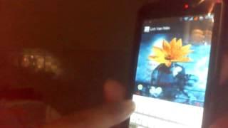Lich Van Nien YouTube video