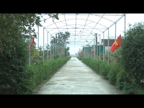 Xây dựng khu vườn kiểu mẫu - Bước đột phá trong Nông thôn mới ở Hà Tĩnh