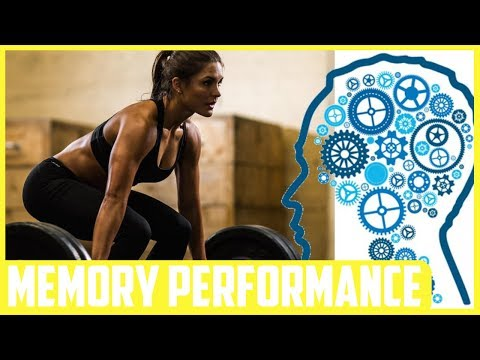 One Episode of Weight Training Can Enhance Memory Performance A Study Finds