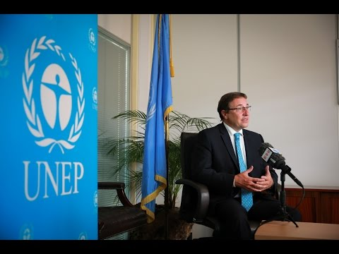 UNEP hails China's leadership in renewable energy investment