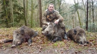 chasse sangliers en battue   hunting compilation tirs gros gibier 2012