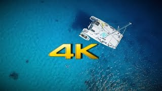 4k Version of Best Diving cruise through the Tuamotu Archipelago, French Polynesia French Polynesia is one of the best diving destinations on the blue planet.