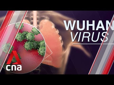 Singapore confirms first case of Wuhan virus