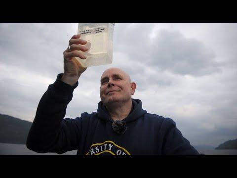 Loch Ness: Forscher suchen Monster-DNA