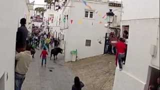 Vejer de la Frontera Spain  city photo : Girls film the Bull Run in Vejer de la Frontera 2013