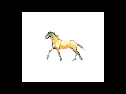 Trot and Galopp Animation