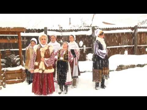 Nina Predescu - Ninge, ninge-n munţii mei [Official Video]NOU 2014