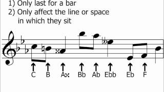 Accidentals&Semitones (half-steps) Explained - Music Theory