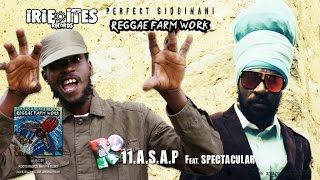 Download Lagu PERFECT GIDDIMANI Ft. SPECTACULAR - A.S.A.P. - IRIE ITES RECORDS Mp3