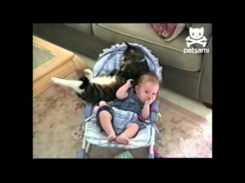黑貓與嬰兒感情好的不得了~都捨不得離開他呢!!!