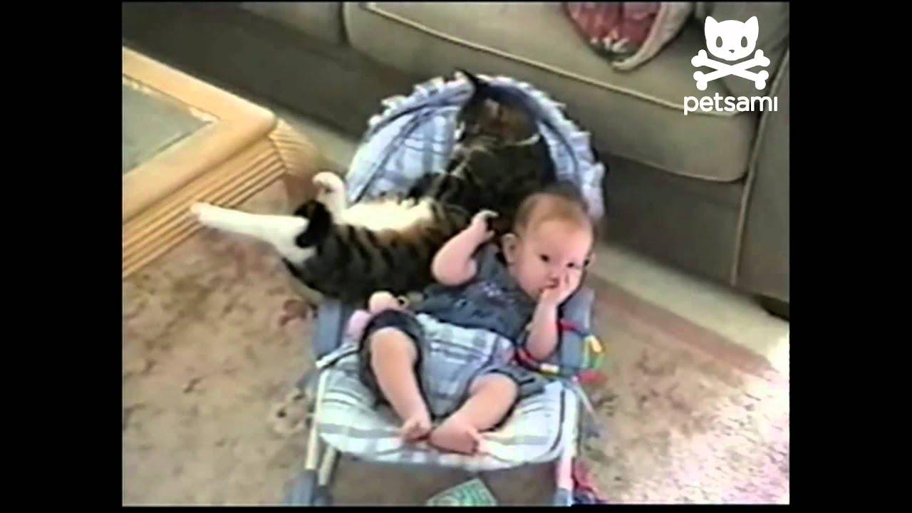 Mačka i beba – kad ti se maca popne na glavu, pa se mazi, grli i spava…