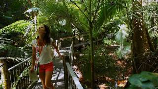 Just under 2 hours' drive from Cairns is the village of the Daintree.