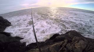 Aberdeen United Kingdom  City pictures : UK Aberdeen Cod fishing 03/01/15