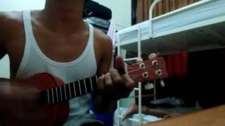 Cover ukulele