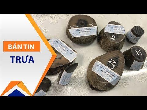 Bắt 4kg sừng tê giác trái phép giấu 'cực dị' | VTC1 - Thời lượng: 46 giây.