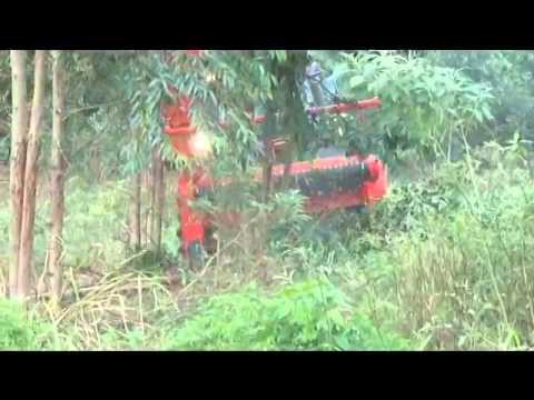 Colheitadeira de Biomassa H600