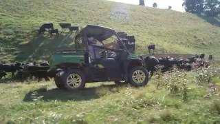9. New John Deere Gators XUV 590i