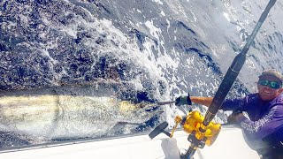 Fishing South West Rocks with Wildside Sportfishing