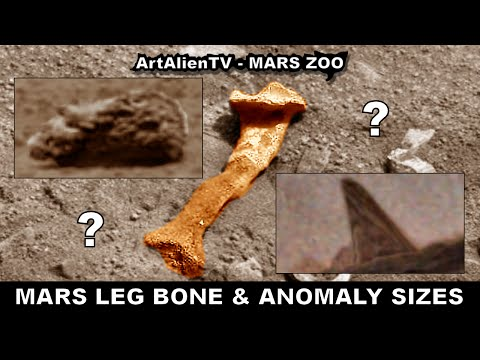 MARS LEG BONE: Comparing Alien Anomaly Sizes – HiRISE & Curiosity. ArtAlienTV – MARS ZOO  1080p