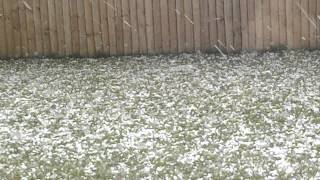 Rangiora New Zealand  city pictures gallery : Hail Storm in Rangiora New Zealand