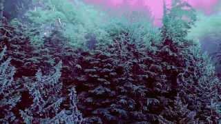 Nature Noir Crystal Stilts