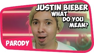 Video Justin Bieber - What Do You Mean PARODI !! MP3, 3GP, MP4, WEBM, AVI, FLV Februari 2018