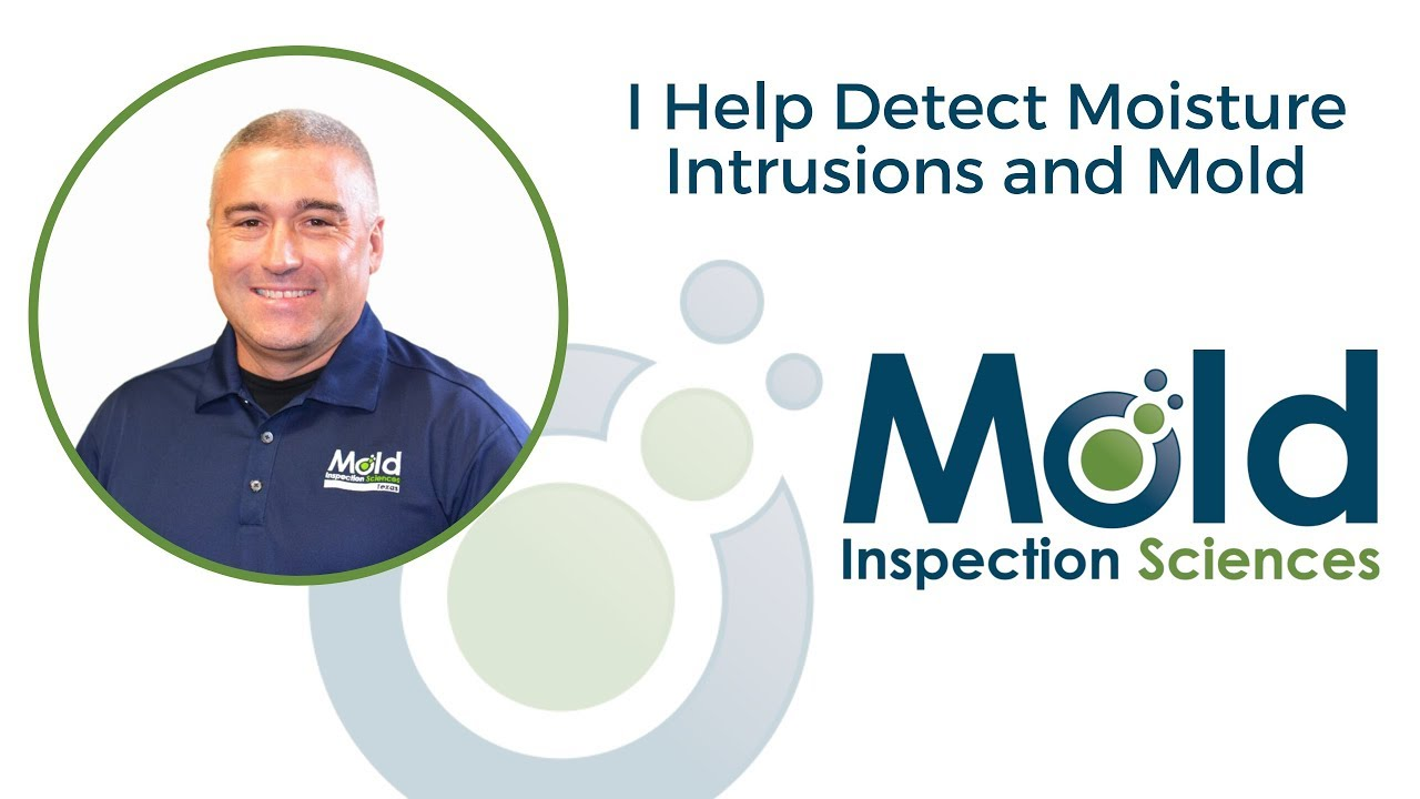 I Help Detect Moisture Intrusion and Mold