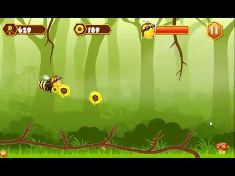 Video of Sonic Bees