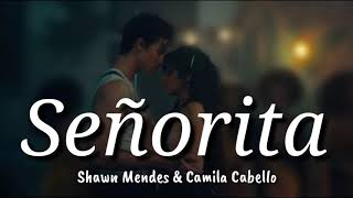 Video Shawn Mendes & Camila Cabello - Señorita Lyrics | Terjemahan Indonesia MP3, 3GP, MP4, WEBM, AVI, FLV September 2019