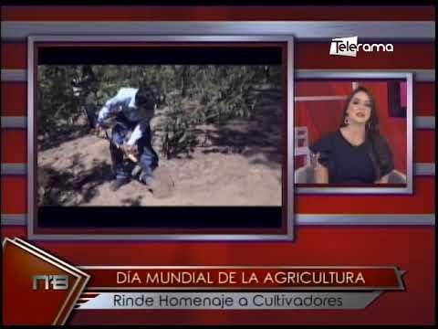 Día mundial de la agricultura rinde homenaje a cultivadores