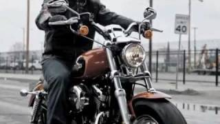 9. 2011 New Harley-Davidson Sportster XL 1200 Custom